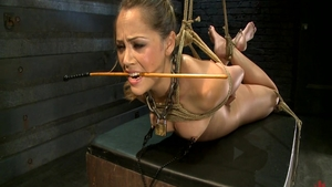 Slut Kristina Rose feels the need for BDSM in HD