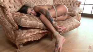 Domination tied up in the company of Bonnie Rotten