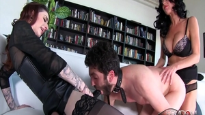 Poor Veronica Avluv ass pounded
